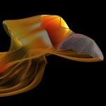 2007 Informational Graphics winner: Modeling the Flight of a Bat